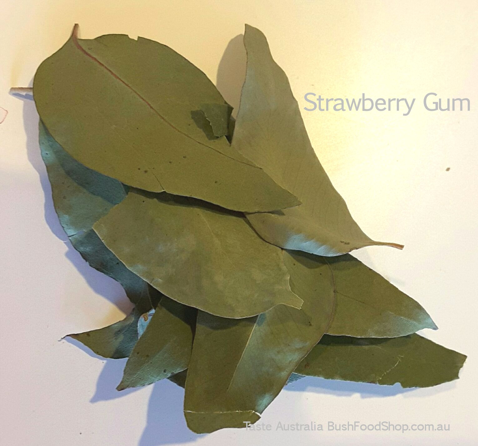 strawberry gum leaf